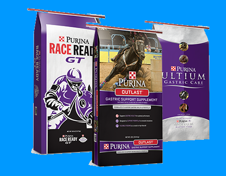 Purina Gastric Support Products
